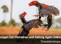 Keuntungan Dari Permainan Judi Sabung Ayam Online