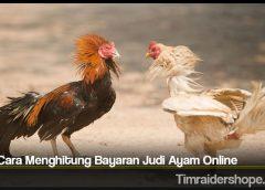 Tata Cara Menghitung Bayaran Judi Ayam Online